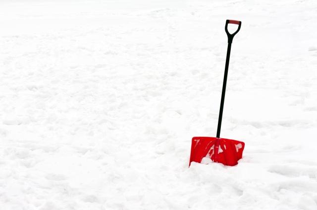 A Career Coach on a Snow Day:Grit