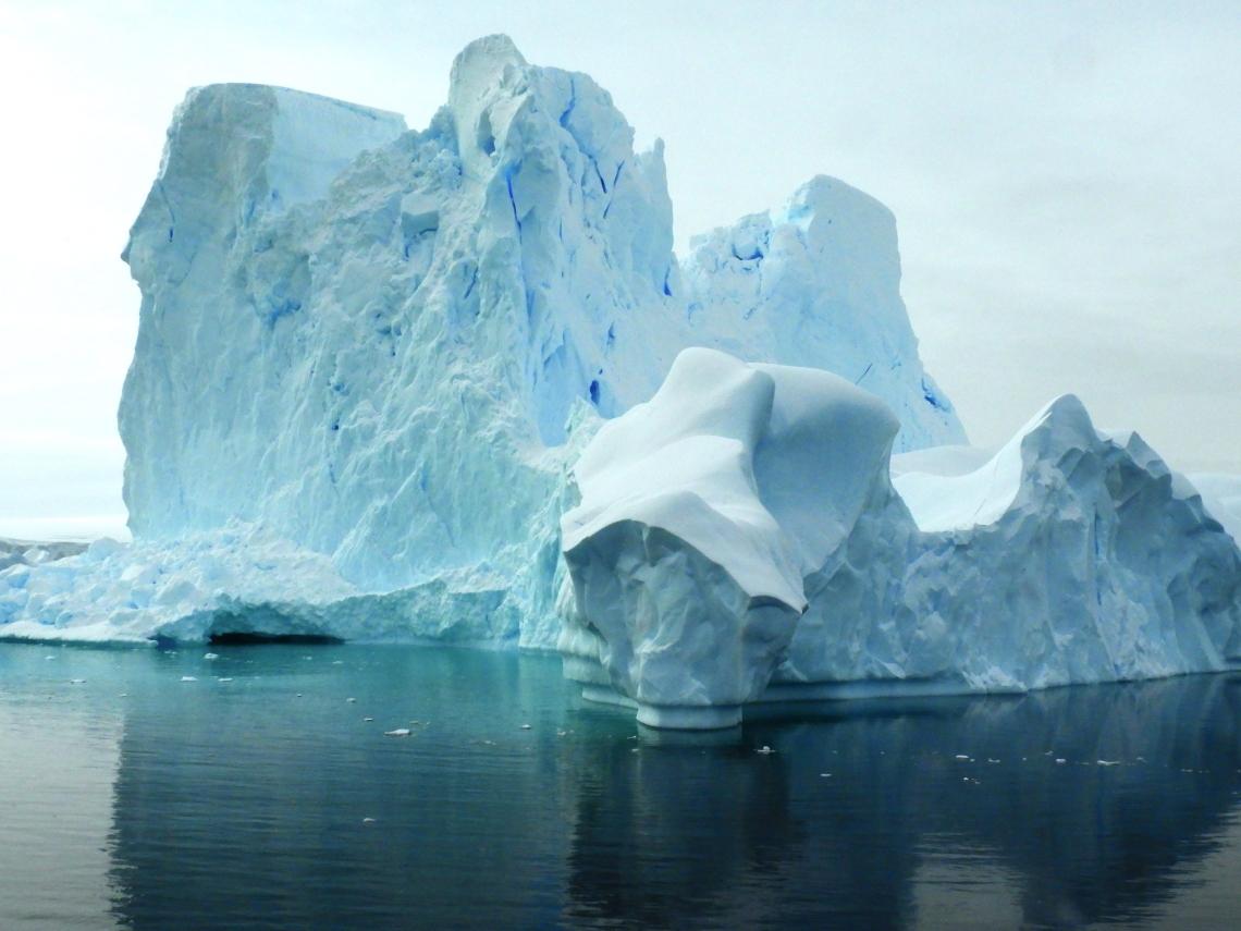 Cathy Sorbara - Antarctica